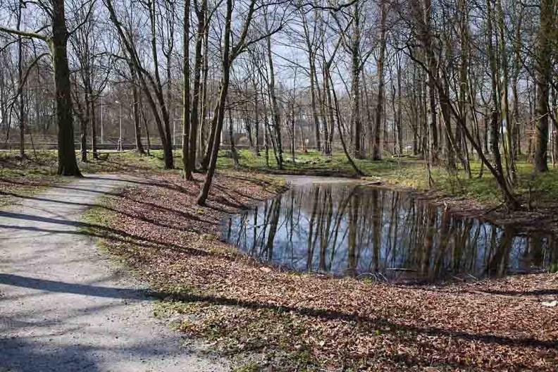 Beverwijk Scheibeek 27032011 07 ASP