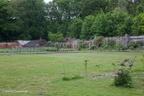 Vogelenzang huis 2012 ASP 06