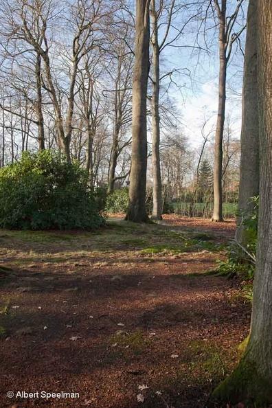 Driebergen Welgelegen 2013 ASP 04