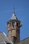 Dordrecht Dordwijk 2014 ASP 31