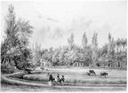 Overvoorde - Rijswijk - PJ Lutgers 1855 - BU3
