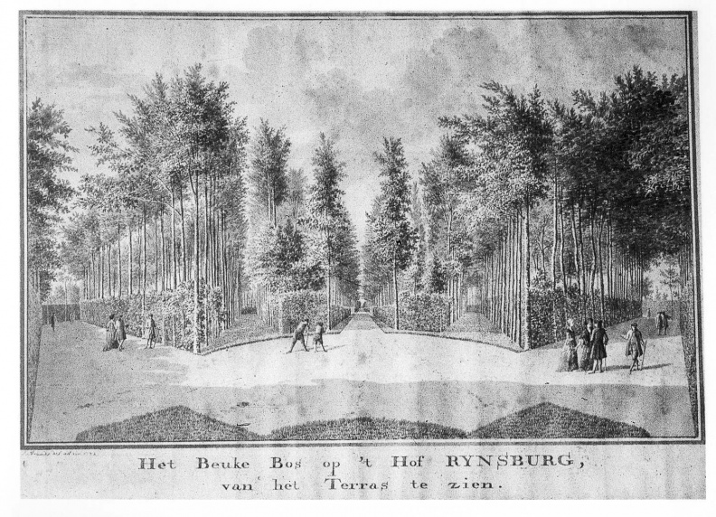 Oostkapelle Rijnsburg - park bos - tekening Jan Arends 1772 - HET01