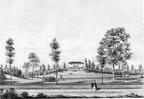 Driebergen Beerschoten - gravure - DR1