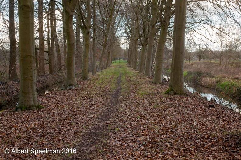 Zeist Rijnwijk 2016 ASP 07
