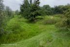 Herwijnen Frissestijn 2012 ASP 03