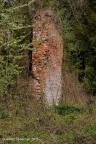 Afferden Bleyenbeek 2011 ASP 006
