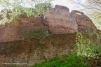 Wildenstein Burg 2006 ASP 10