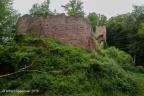 Wildenstein Burg 2016 ASP 002