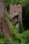 Wildenstein Burg 2016 ASP 003