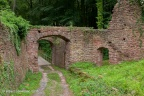 Wildenstein Burg 2016 ASP 006