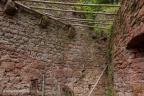 Wildenstein Burg 2016 ASP 010