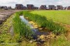 Zwolle Werkeren 2010 ASP 007