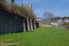 Dasburg Burg 2018 ASP 008