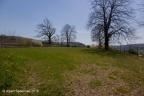 Dasburg Burg 2018 ASP 017