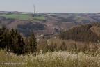 Dasburg Burg 2018 ASP 022