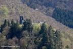 Falkenstein Burg 2018 ASP 003