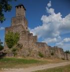 Grimburg Burg 2010 ASP 006