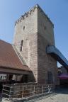 Reipoltskirchen Burg 2018 ASP 006