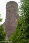 Frauenberg Burg 2008 ASP 004