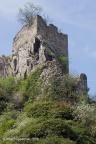 KAllenfels Burg 2018 ASP 002