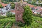 Gutenberg Burg 2008 ASP 005
