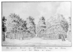 a - Overduin - parkbos - tekening Jan Arends 1772 - HET01