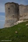 CoucyLeChateau Chateau 2010 ASP 06