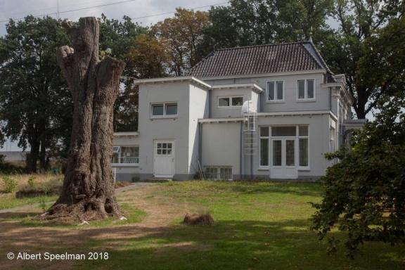 Hintham Zuiderbosch 2018 ASP 07