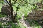 Liteni Castle 2018 ASP 029
