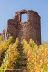 Gutenberg Burg 2018 ASP 08