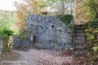 Altenbaumberg Burg 2018 ASP 008