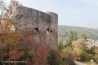 Altenbaumberg Burg 2018 ASP 010