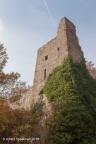 Altenbaumberg Burg 2018 ASP 012