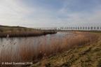 Westbeemster Spijkerboor 2019 ASP 05