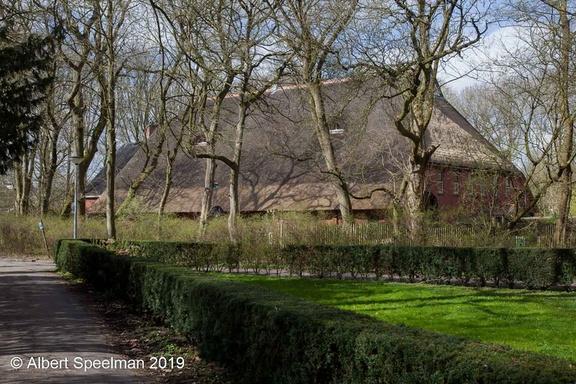 Groningen Groenestein 2019 ASP 06