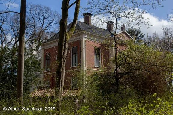 Groningen Groenestein 2019 ASP 15