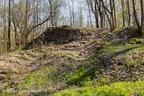 Reichenbach Burg 2019 ASP 04