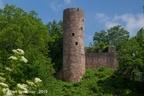 Wallenstein Burg 2019 ASP 14
