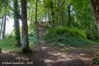 Lafauche Chateau 2019 ASP 19