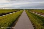 Adorp Harsens Nw 2013 ASP 01