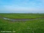 Adorp Harsens Oud 2004 ASP 07