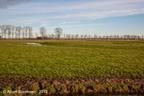 Adorp Harsens Oud 2013 ASP 01