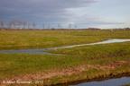 Adorp Harsens Oud 2013 ASP 03