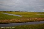 Adorp Harsens Oud 2013 ASP 05