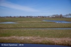 Adorp Harsens Oud 2015 ASP 02