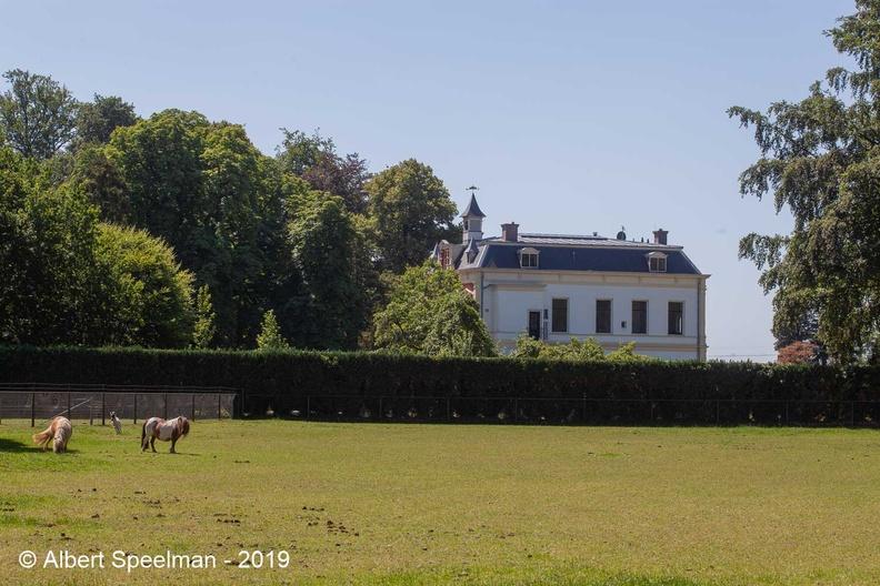Laren HetRoss 2019-1 ASP 02