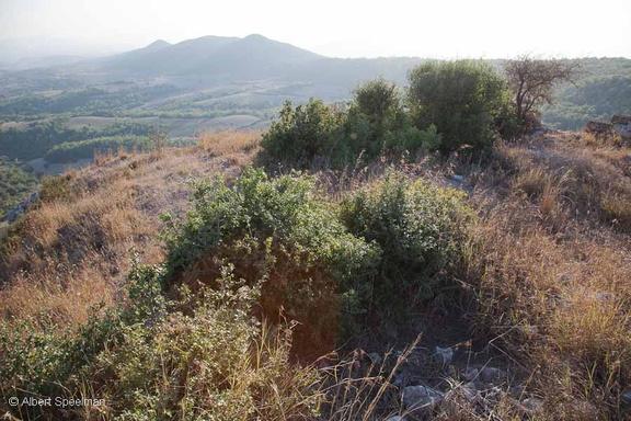Babaoglan Kalesi 04102010 ASP 10