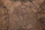 Al Husn CracdesChevaliers 14092006 ASP 09