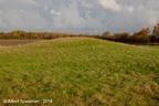 Zanddijk Bosweg 2019 ASP 02