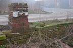 Pieterburen Dijksterhuis 19022006 ASP 04